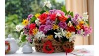 105-летний юбилей в ОБУСО «ЦСО «Участие»